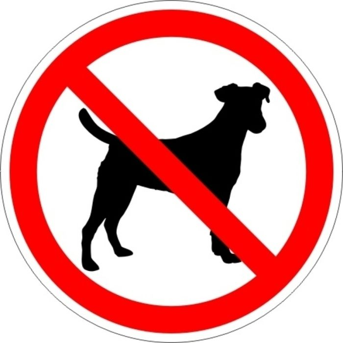 Для открытки, вход с собаками запрещен табличка картинка