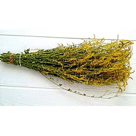 Веник из трав донник в упаковке в Калининграде