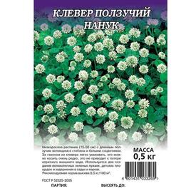 Семена сидерата Клевер ползучий белый Нанук ГАВРИШ 0,5 кг в Калининграде